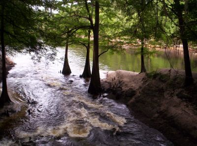 There Are Several Well Marked Hiking Trails In The Park. Some Of The Trails  Run Along The River Bank And Open On To Scenic Views Of The River At  Regular ...